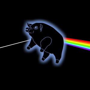 Pigs on the Wing - Pink Floyd tribute band - album image